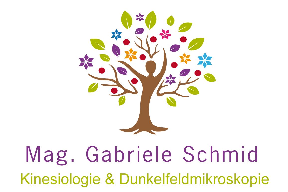 Kinesiologie & Dunkelfeldmikroskopie